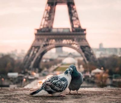 Voyager sur Paris en toute tranquillité