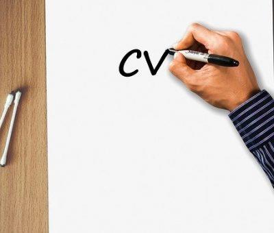 CV par secteur d'activité